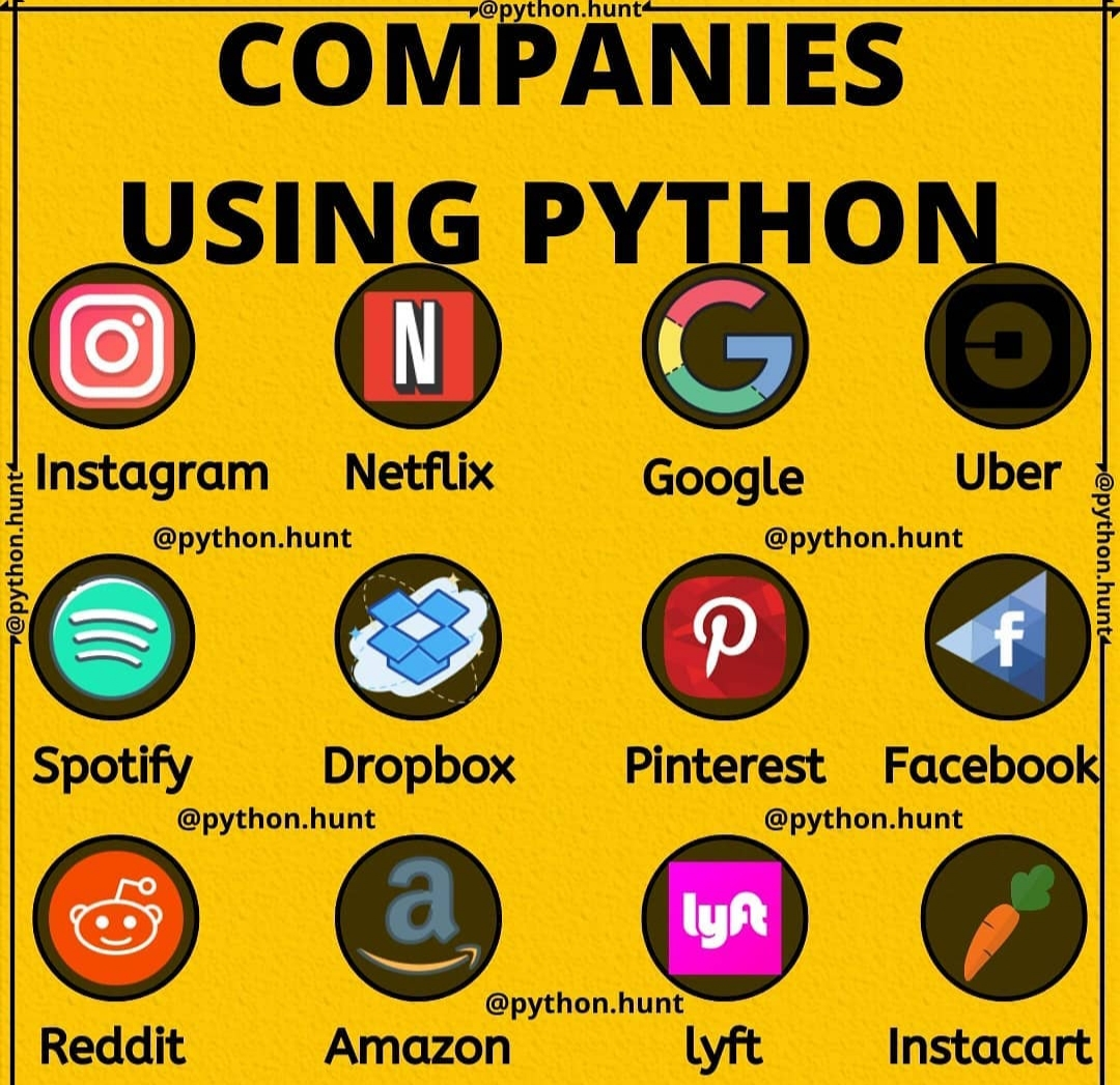 Big companies using python example